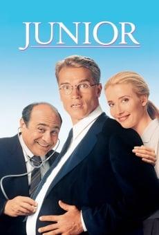 Ver película Junior