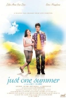Ver película Just One Summer