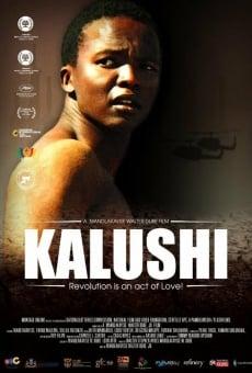 Ver película Kalushi: The Story of Solomon Mahlangu