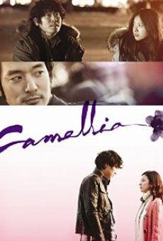 Ver película Kamelia
