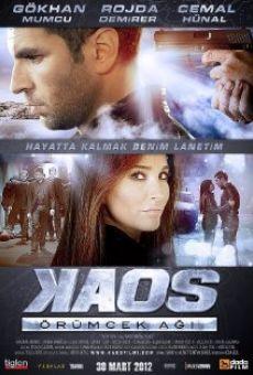 Ver película Kaos örümcek agi
