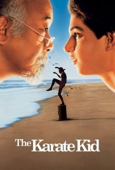 The Karate Kid online kostenlos