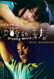 Ver película Keeping Watch