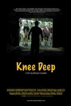 Knee Deep on-line gratuito