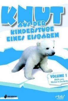 Knut! - Aus der Kinderstube eines Eisbären