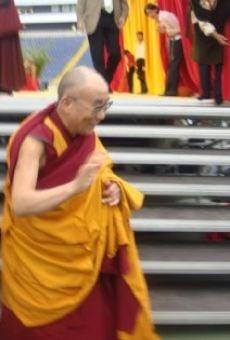 Ver película Kommt ein Gott auf Besuch... Der Dalai Lama in Frankfurt