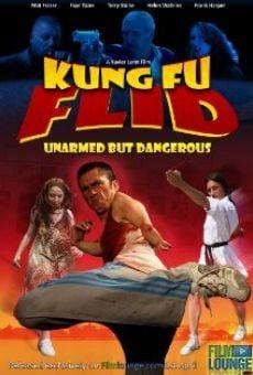 Kung Fu Flid online