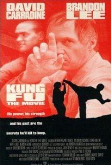 Ver película Kung Fu: La película