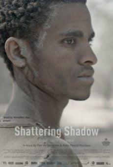Película: L'éclat furtif de l'ombre