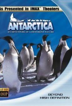 Antartica, prisonniers du froid en ligne gratuit