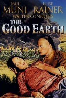 Ver película La buena tierra