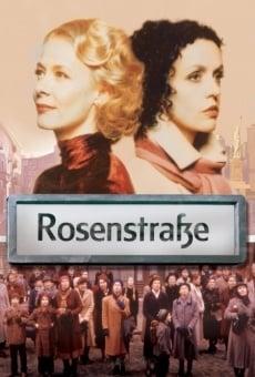 Rosenstraße online