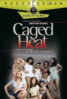 Ver película La cárcel caliente