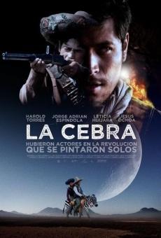 Ver película La cebra