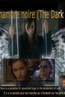 Ver película La chambre noire