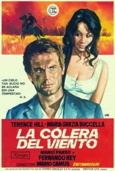 Ver película La cólera del viento