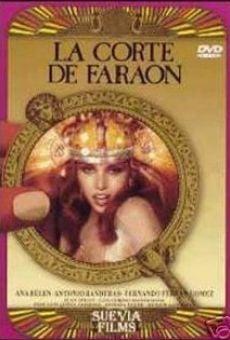 Ver película La Corte de Faraón
