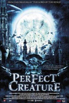 Ver película La criatura perfecta