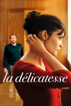 Ver película La delicadeza