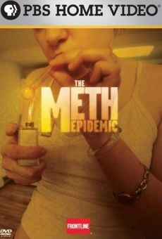 The Meth Epidemic online