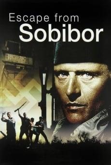 La escapada de Sobibor online