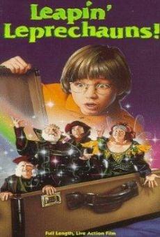 La magia de los gnomos
