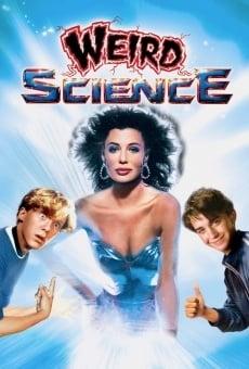 Ver película La mujer explosiva
