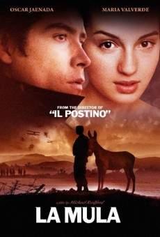 Ver película La mula