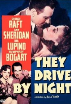 They Drive by Night on-line gratuito