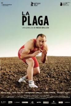 Ver película La plaga