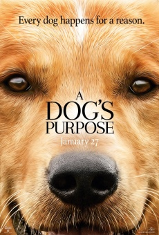 A Dog's Purpose on-line gratuito