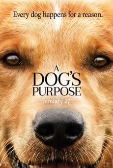 A Dog's Purpose online free