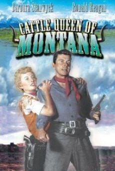 Ver película La reina de Montana