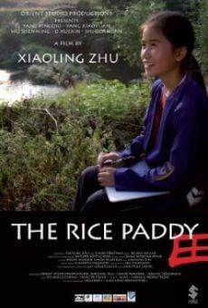Película: La rizière