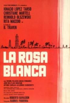 Ver película La rosa blanca
