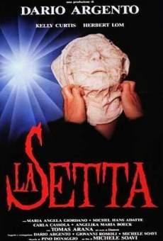 Ver película La secta