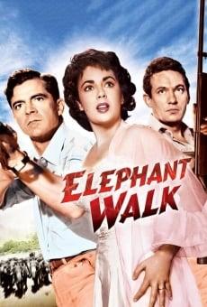 Elephant Walk on-line gratuito