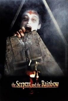 Ver película La serpiente y el arco iris