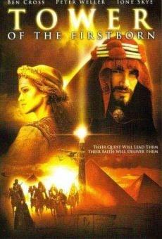 Ver película La torre de la vida