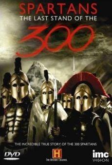 Ver película La última batalla de los 300