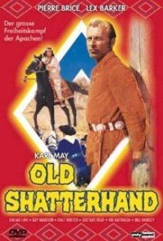 Ver película La última batalla de los apaches