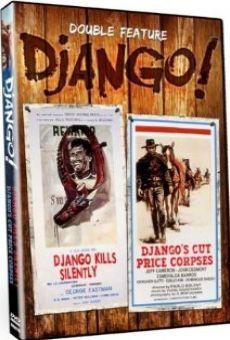 La venganza de Django online gratis