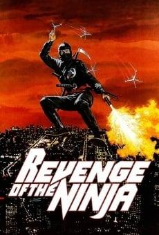 Ninja la furia umana online