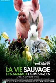 La vie sauvage des animaux domestiques gratis