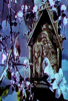 Ver película La voix du rossignol