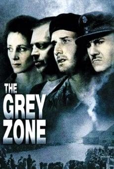 Ver película La zona gris