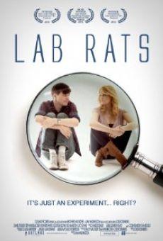 Lab Rats online