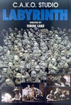 Ver película Laberinto