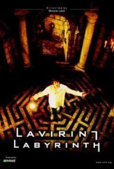 Ver película Labyrinth