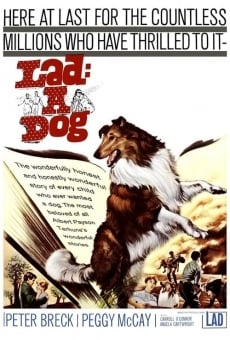 Lad: A Dog online streaming